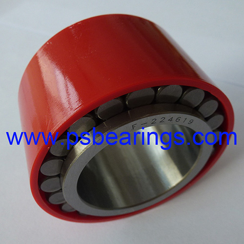 F-224619 Planetary Gear Cylindrical Roller Bearings